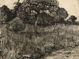 Weeping Tree, 1889 by Vincent van Gogh