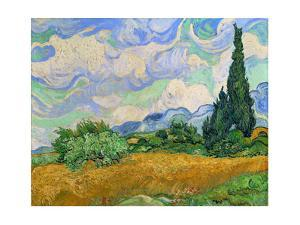 Wheatfield and cypress trees, Saint-Remy-de-Provence. Oil on canvas (1889) 73 x 93.5 cm. by Vincent van Gogh