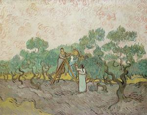Women Picking Olives, 1889 by Vincent van Gogh