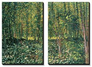 Woods and Undergrowth, c.1887 by Vincent van Gogh