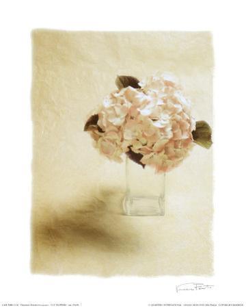 Cut Flowers I