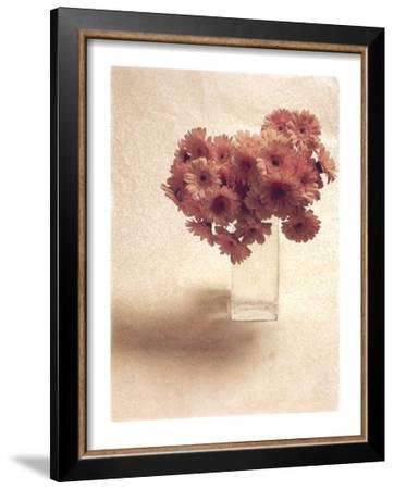 Cut Flowers IV