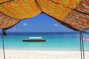Beach, Pange Island, Zanzibar, Tanzania, East Africa, Africa by Vincenzo Lombardo