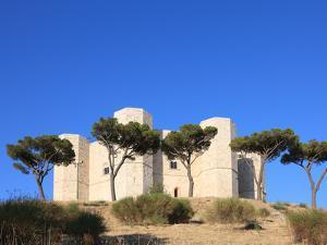 Castel del Monte (Federico II Castle), UNESCO World Heritage Site, Puglia, Italy, Europe by Vincenzo Lombardo