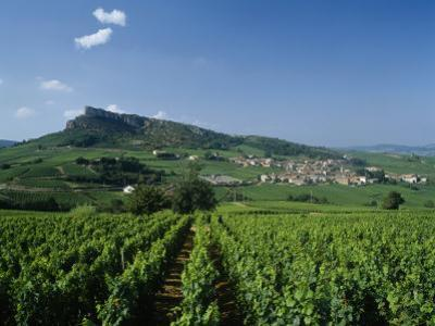 Vineyard on a Landscape with a Village in the Background, Roche De Solutre, Solutre Pouilly