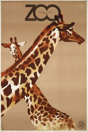 Giraffe Zoo Poland by Vintage Apple Collection