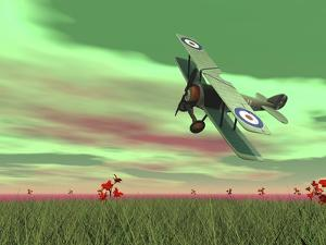 Vintage Biplane Flying Above Green Grass with Flowers by Sunset