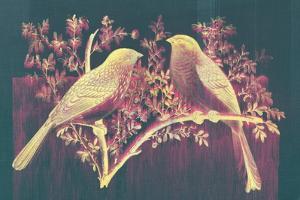 Vintage Birds (Pink)