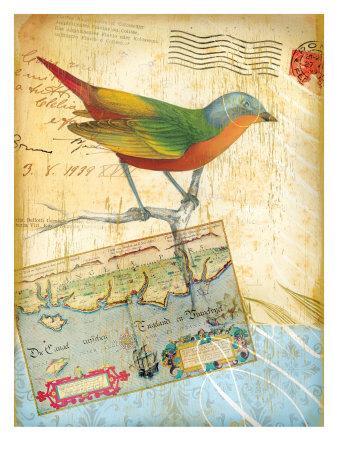https://imgc.allpostersimages.com/img/posters/vintage-botanical-bird-print_u-L-P9E0WB0.jpg?artPerspective=n