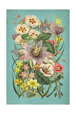 https://imgc.allpostersimages.com/img/posters/vintage-flowers-on-teal_u-L-Q1G598X0.jpg?p=0