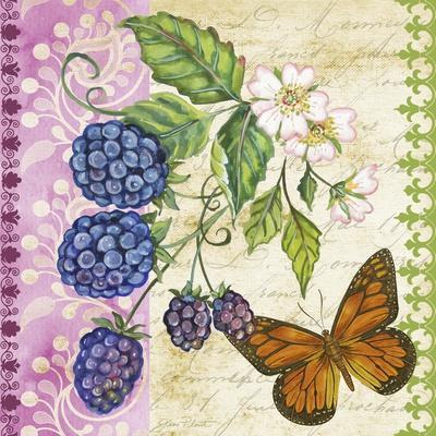 https://imgc.allpostersimages.com/img/posters/vintage-fruit-blackberries_u-L-Q1CA8EG0.jpg?artPerspective=n