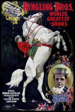 Circus 005 by Vintage Lavoie