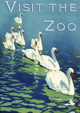 The Zoo 002 by Vintage Lavoie