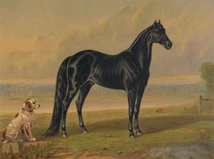 America's Renowned Stallions, c. 1876 I by Vintage Reproduction