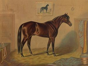 America's Renowned Stallions, c. 1876 III by Vintage Reproduction