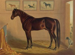 America's Renowned Stallions, c. 1876 IV by Vintage Reproduction