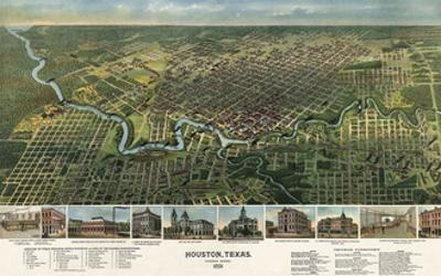 Bird's Eye Map of Houston, Texas, 1891 by Vintage Reproduction