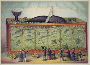 The Aquarium by Vintage Reproduction
