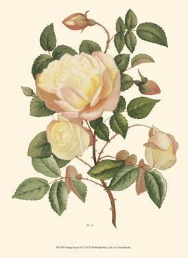 Vintage Roses IV