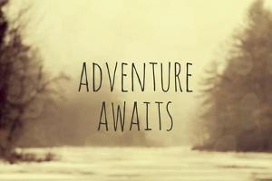Adventure Awaits II by Vintage Skies