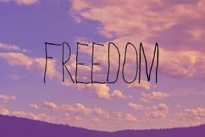 Freedom by Vintage Skies