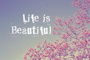 Life Is Beautiful by Vintage Skies