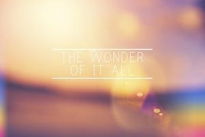 The Wonder by Vintage Skies