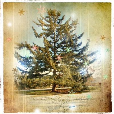 https://imgc.allpostersimages.com/img/posters/vintage-winter-background-with-pine-tree_u-L-PN13VN0.jpg?artPerspective=n