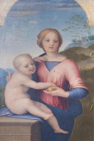 https://imgc.allpostersimages.com/img/posters/virgin-and-child-andrea-del-sarto-1486-1530_u-L-PRBIQ60.jpg?p=0