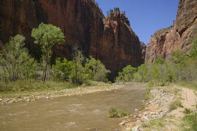 https://imgc.allpostersimages.com/img/posters/virgin-river-zion-national-park-utah-united-states-of-america-north-america_u-L-PQ8RFZ0.jpg?p=0