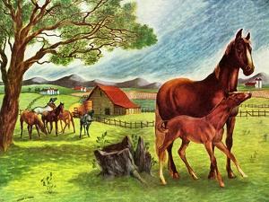 Horses - Jack & Jill by Virginia Mann