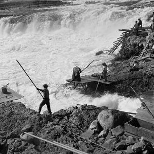 Dip Net Fishing at Celilo Falls, 1954 by Virna Haffer