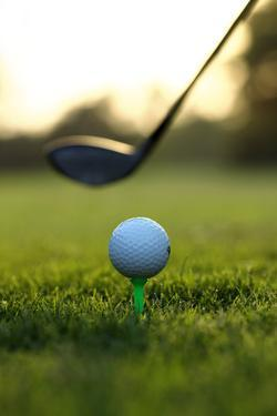 Close up of Golf Ball and Club on Course by Visage