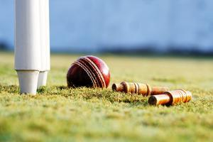 Partial View of the Cricket Stumps and a Ball by Visage