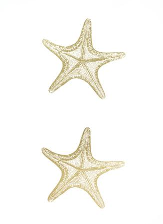 2-Up Gold Foil Starfish II by Vision Studio