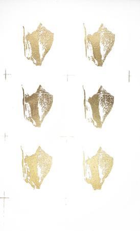 6-Up Gold Foil Shell III by Vision Studio