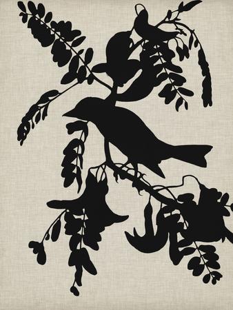 Audubon Silhouette V