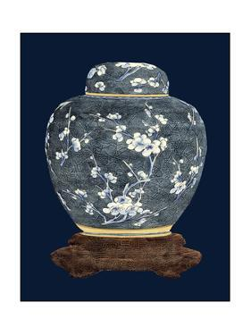 Blue and White Ginger Jar II by Vision Studio