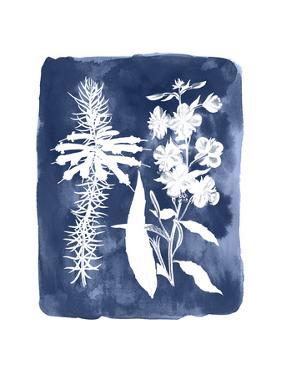 Botanical Inverse I by Vision Studio