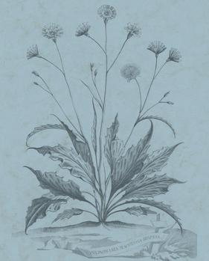 Botanical on Teal IV by Vision Studio