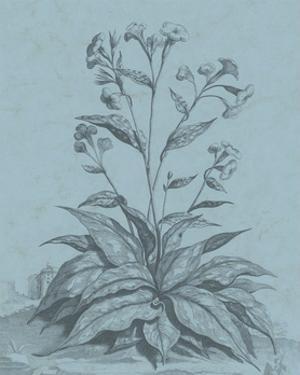 Botanical on Teal VI by Vision Studio