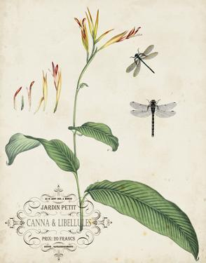 Canna & Dragonflies I by Vision Studio