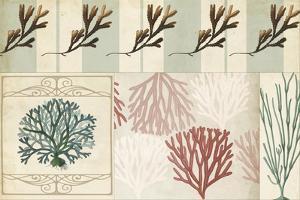 Coastal Patternbook I by Vision Studio