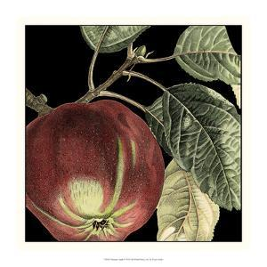 Dramatic Apple by Vision Studio