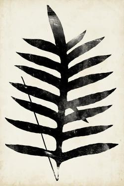 Fern Silhouette III by Vision Studio