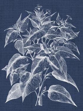 Foliage Chintz III by Vision Studio
