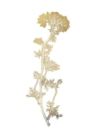 Gold Foil Nature Study I by Vision Studio