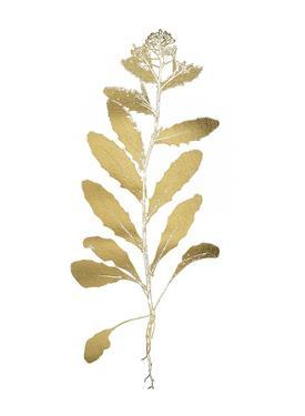 Gold Foil Nature Study IV by Vision Studio