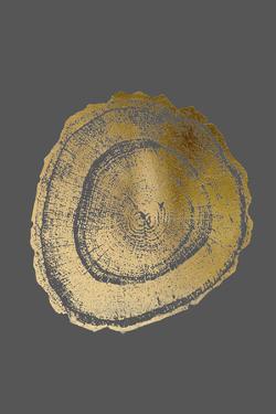 Gold Foil Tree Ring III on Dark Grey by Vision Studio