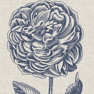 Indigo Floral on Linen V by Vision Studio